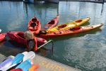 Bassi Brown leads the kayak flotilla